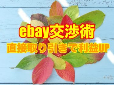 【ebay交渉術③】Paypal履歴から直接交渉を行おう